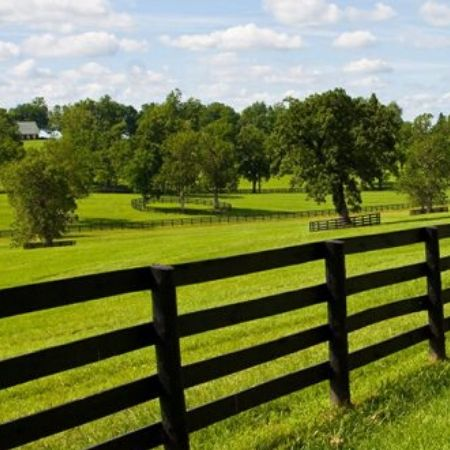 Agriculture Fencing Services